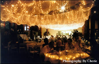 wedding%20light%20canopy%20star%20filter.jpg