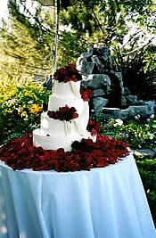Winery Wedding, Wine Country Wedding.